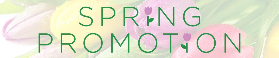 Spring Promotion Banner